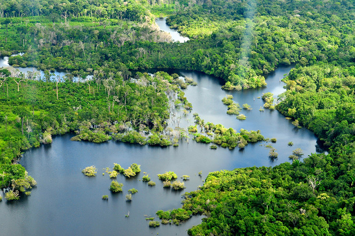 Aerial view of the Amazon rainforest, near Manaus, the capital of Amazonas, Brazil. Photo by Neil Palmer/CIAT for Center for International Forestry Research (CIFOR)