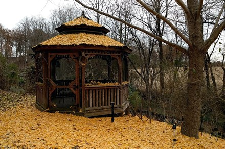 The gazebo at the James A. Duke Green Farmacy Garden in Fulton, Maryland. Photo by Betty Belanus
