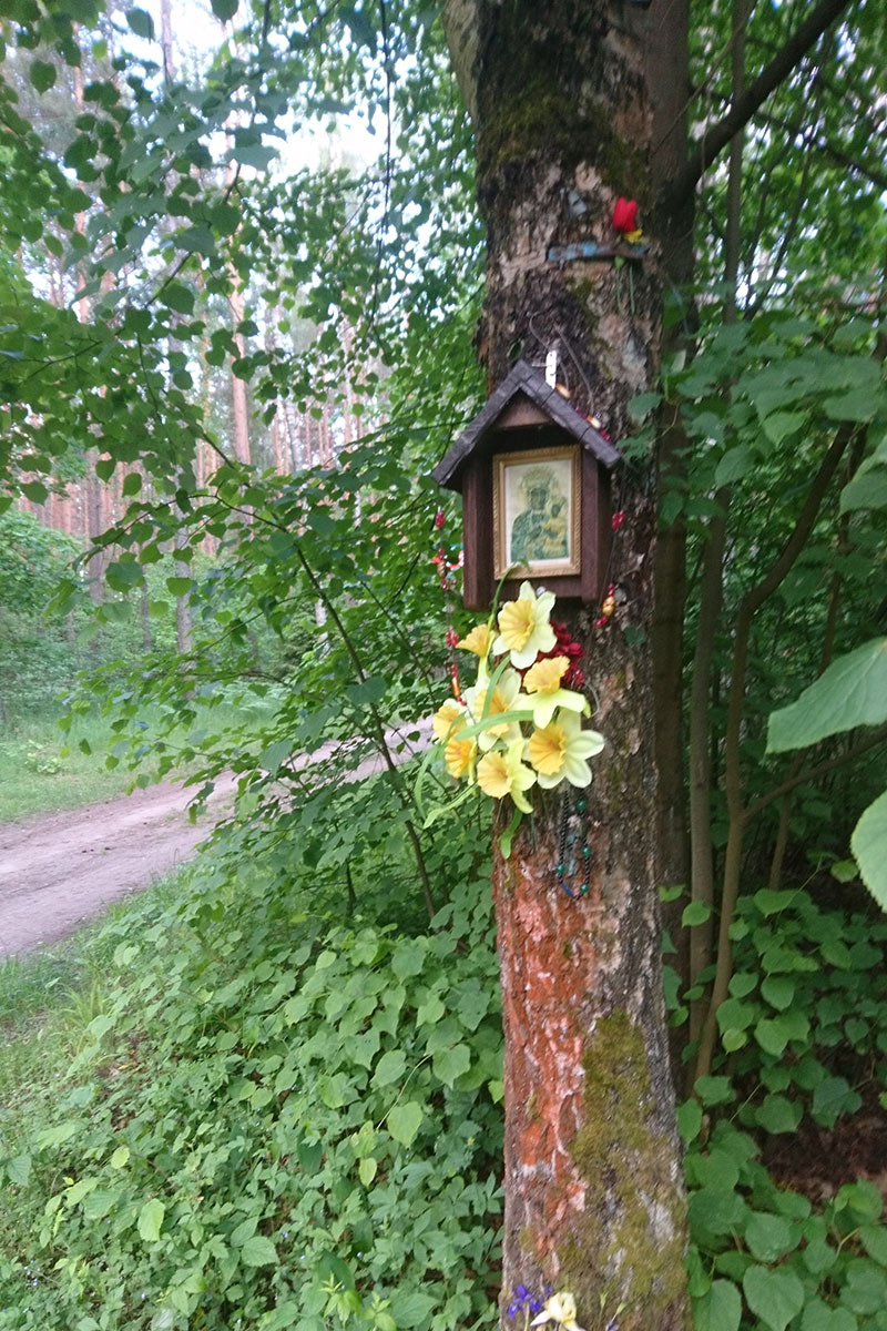 A small shrine nailed to the trunk of a tree, with yellow daffodils hanging from it.
