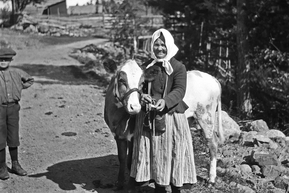 A woman on a rural mountain road holds the bridle of the cow alongside her. Black-and-white photograph.