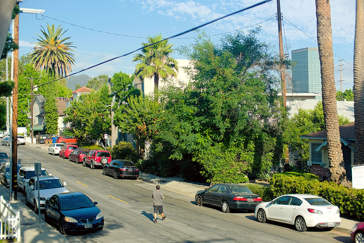 Photo from a second-story porch overlooking a street lined with parked cars, palm trees, and other green foliage. A man crosses the street.