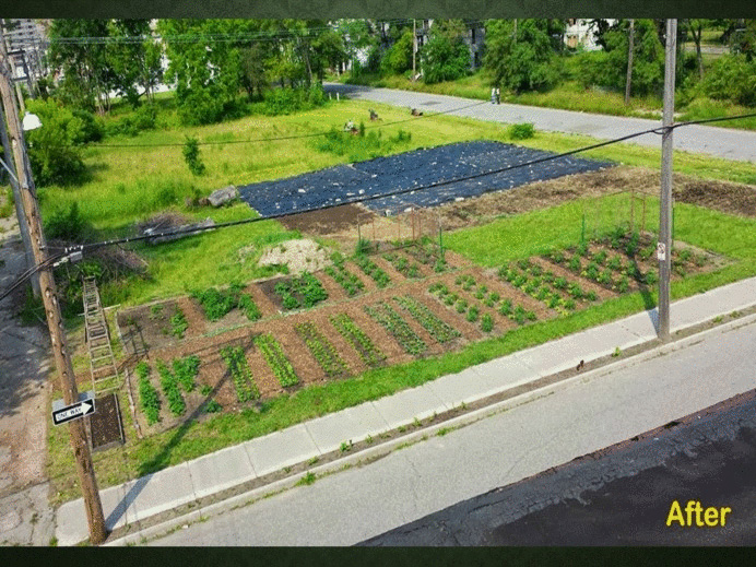 Photo courtesy of the Michigan Urban Farming Initiative