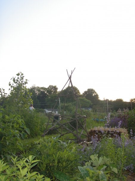 Photo courtesy of the Northampton Community Garden