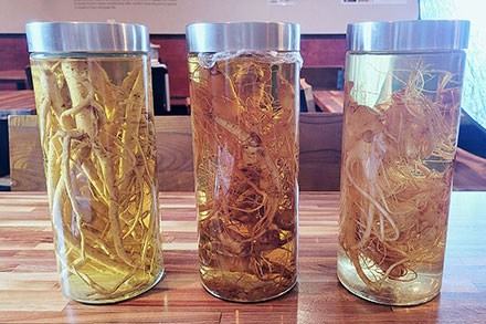 Three cylindrical bottles on a table, each containing clear liquid and a plant root with many thin tendrils.