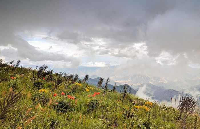 Armenian highlands. Photo by Tom Allen, Transcaucasian Trail